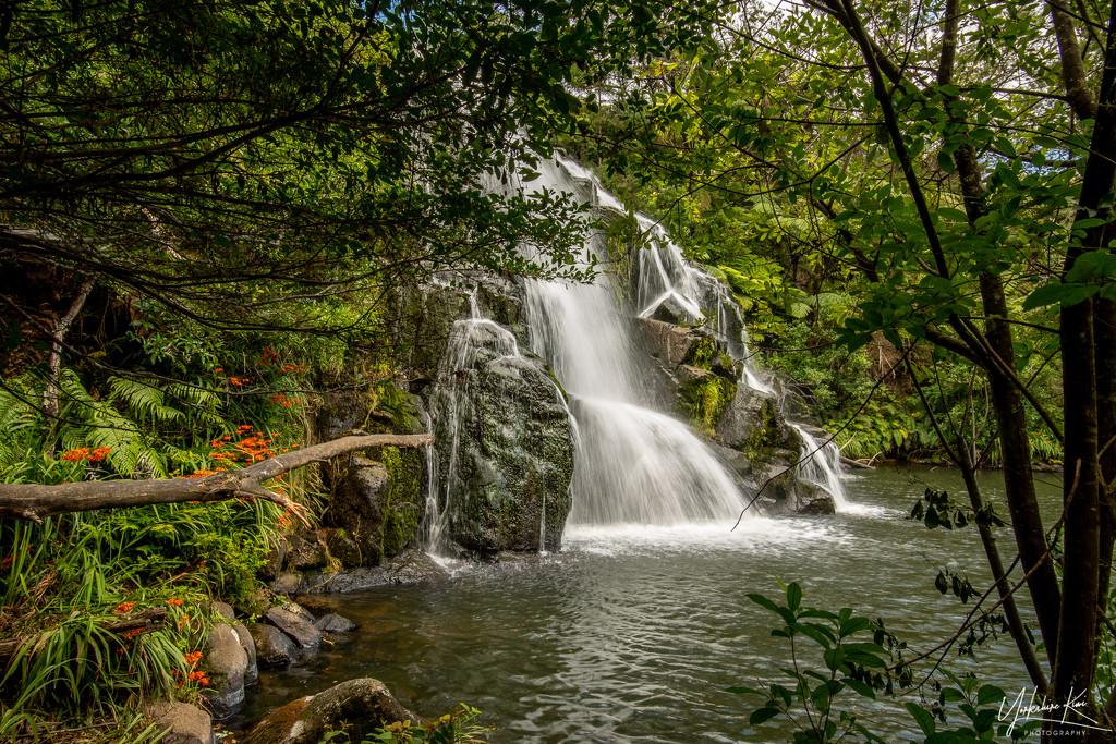Waterfalls and Monbretia by yorkshirekiwi