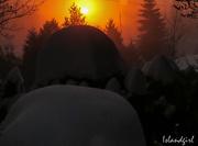 28th Jan 2019 - Frosty sunrise