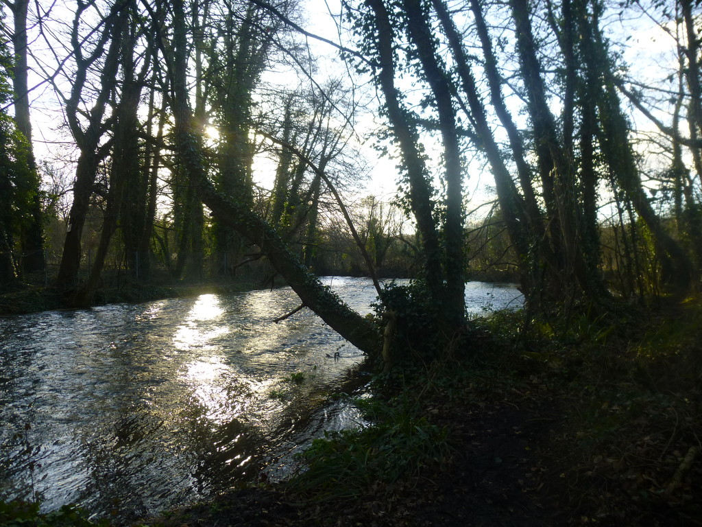 River Itchen by 30pics4jackiesdiamond