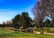 27th Jan 2019 - A Pleasant Walk Spoiled by a Round of Golf