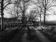 28th Jan 2019 - Drive way - black and white