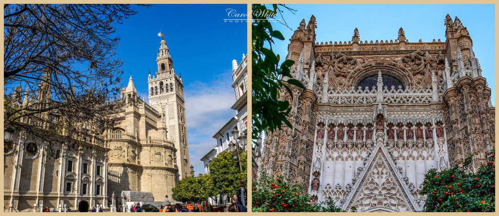 Seville Cathedral 1 by carolmw