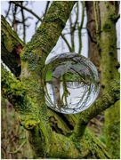 29th Jan 2019 - Wet and cold today so took my orb out to play with!