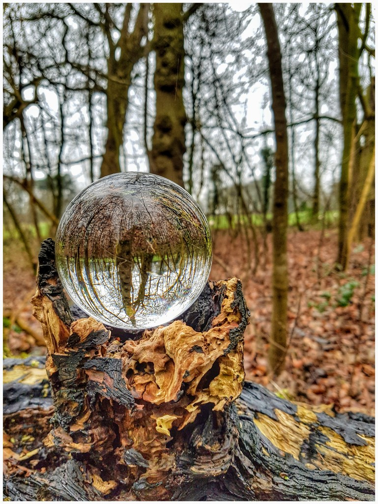 Another orb shot on a grey day! by lyndamcg