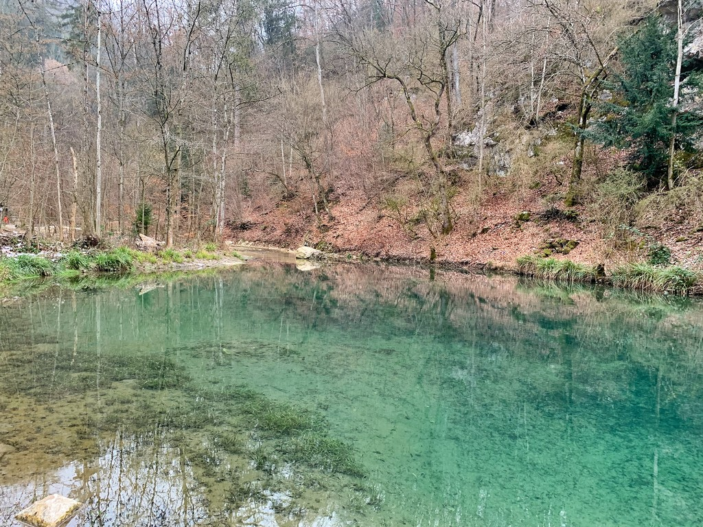 The tiny lake.  by cocobella