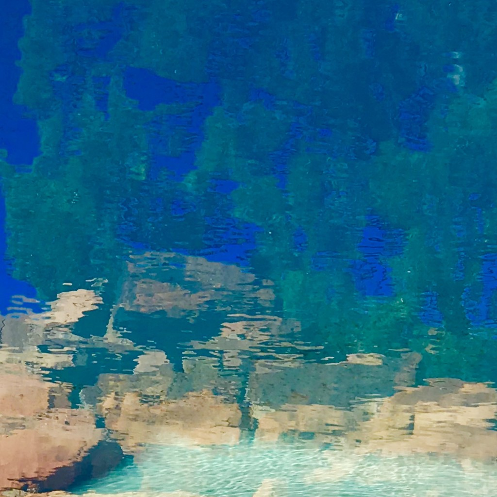 """No water, no life.  No blue, no green"". Sylvia Earle  by louannwarren"