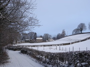 30th Jan 2019 - snowy