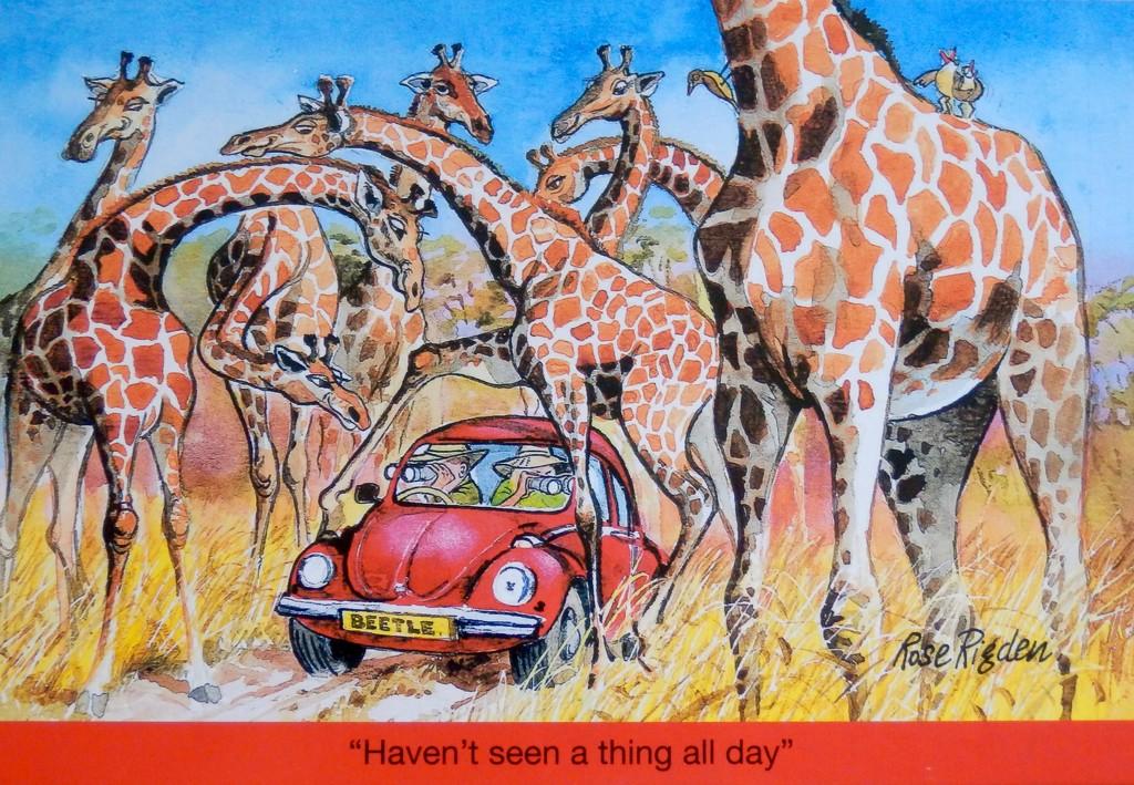 EXTRAS:  Safari Fun for Taffy by casablanca