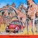 EXTRAS:  Safari Fun for Taffy