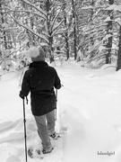 1st Feb 2019 - Hitting the Trails