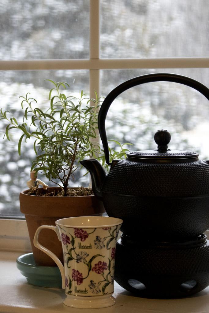 Tea on a Snow Day by lynbonn
