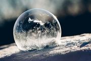 1st Feb 2019 - obligatory bubble