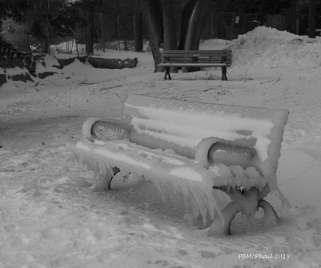 Chilly Bench by selkie