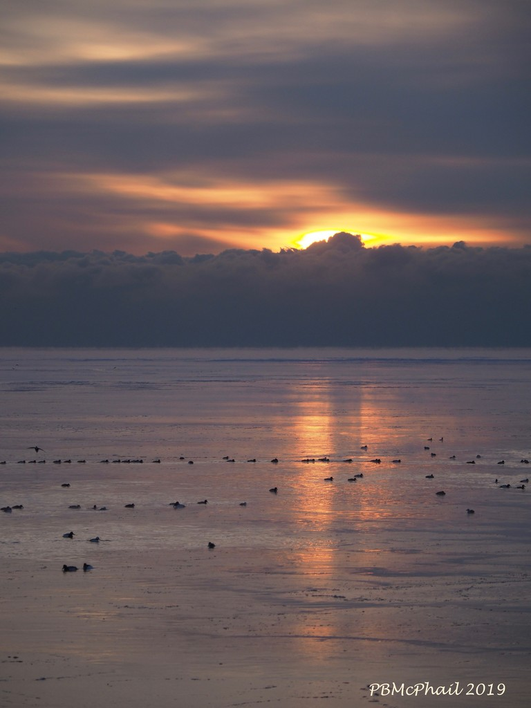Muted Sunrise by selkie