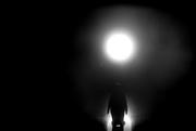 1st Feb 2019 - moonlight serenade