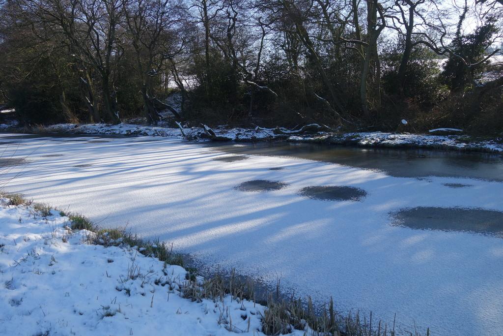 Frozen  by brennieb