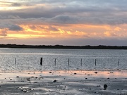 28th Jan 2019 - evening over the estuary