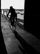 2nd Feb 2019 - The cyclist