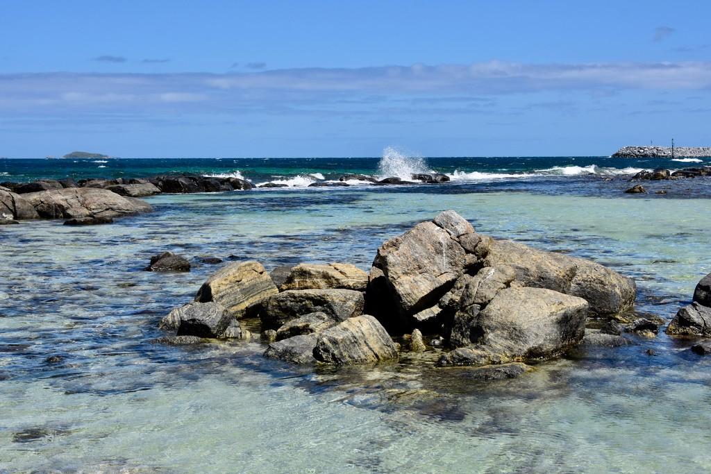 Australia Day At Flinders Bay, Augusta _DSC5035 by merrelyn