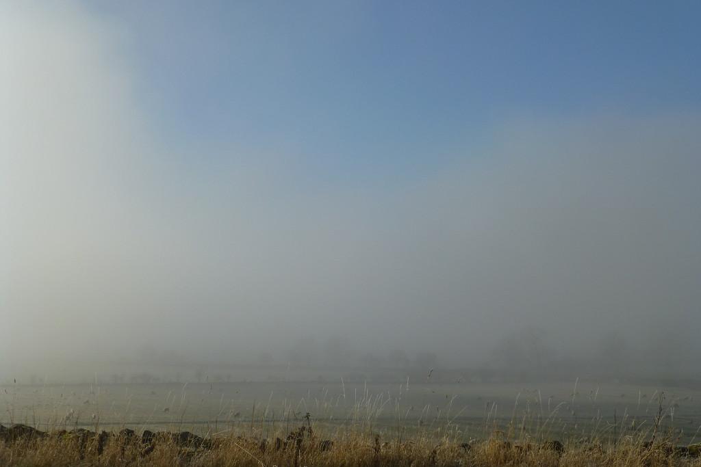 Yer actual freezing fog by joannapayne