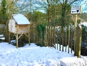 3rd Feb 2019 - Snowy country walk