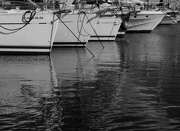 2nd Feb 2019 - 190202 - Boats in the harbour