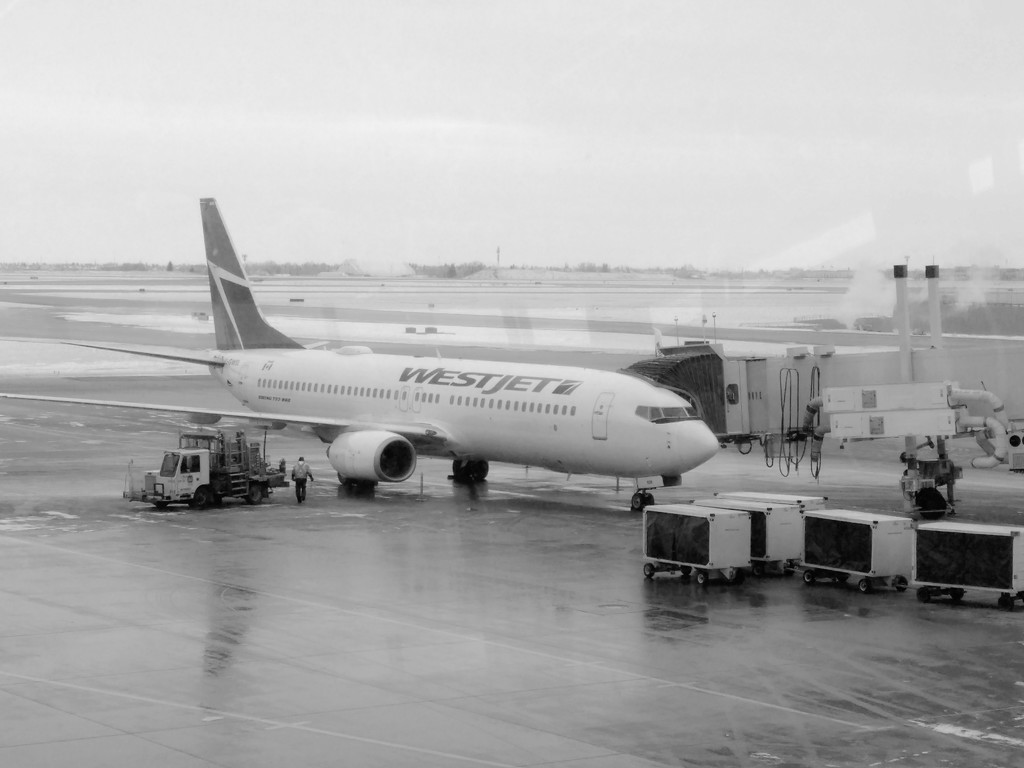Leaving on a jet plane! by sstcowan