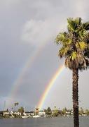 3rd Feb 2019 - Double Rainbow 🌈 🌈