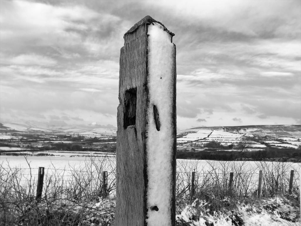 Frozen Gate Post  by ajisaac