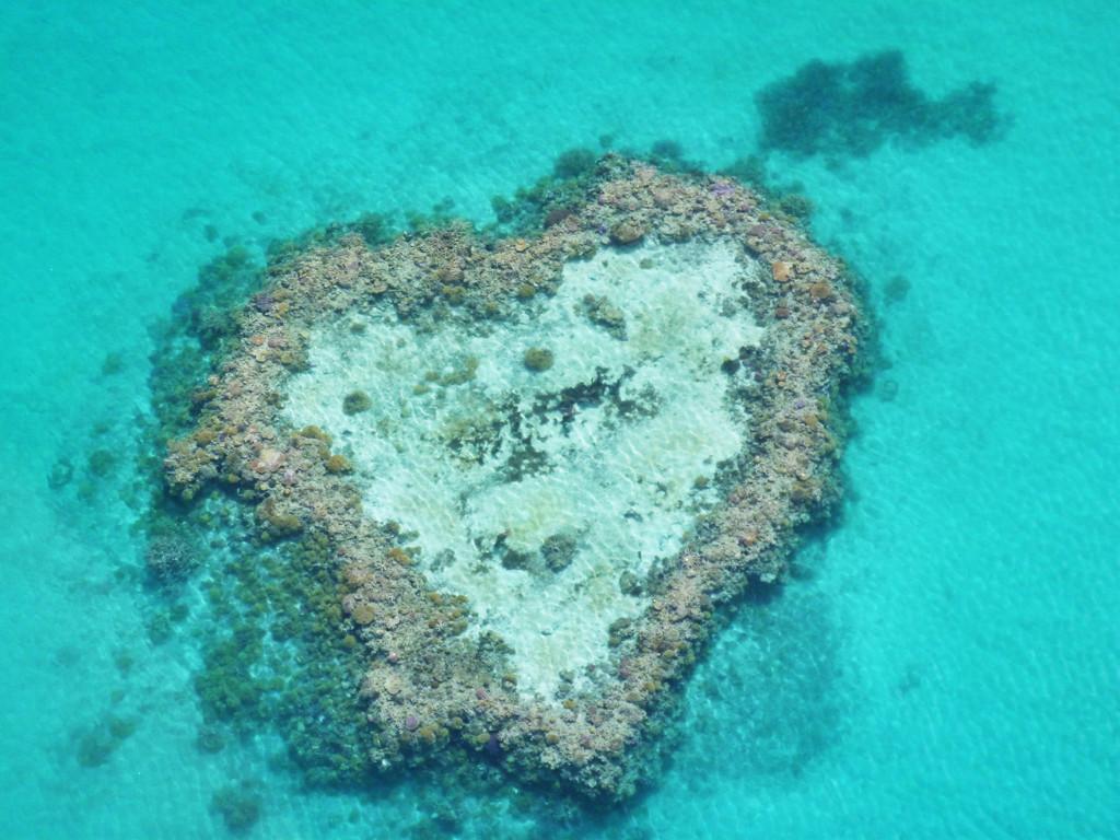 Heart shaped reef by sugarmuser