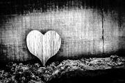 4th Feb 2019 - Wooden heart