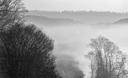 4th Feb 2019 - Fog on the River