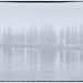 A foggy morning by haskar