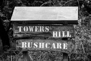 5th Feb 2019 - Towers Hill Bushcare