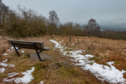 5th Feb 2019 - Bench without a view