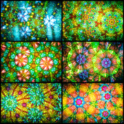 6th Feb 2019 - Kaleidoscope