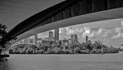 7th Feb 2019 - Under the bridge