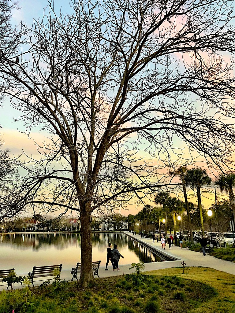 Colonial Lake Park around sunset yesterday. by congaree