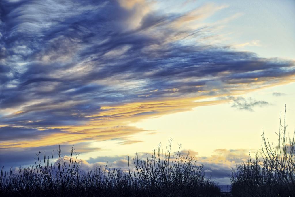 Evening Sky by joysfocus
