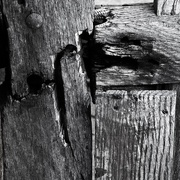 7th Feb 2019 - Between you, me and the gatepost ....