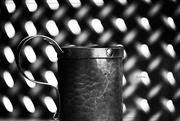 5th Feb 2019 - Mug Shot