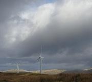 7th Feb 2019 - windfarm with rainbow
