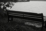 7th Feb 2019 - Texture & Pattern: 4 of 7, Lakeside Bench with Droplets