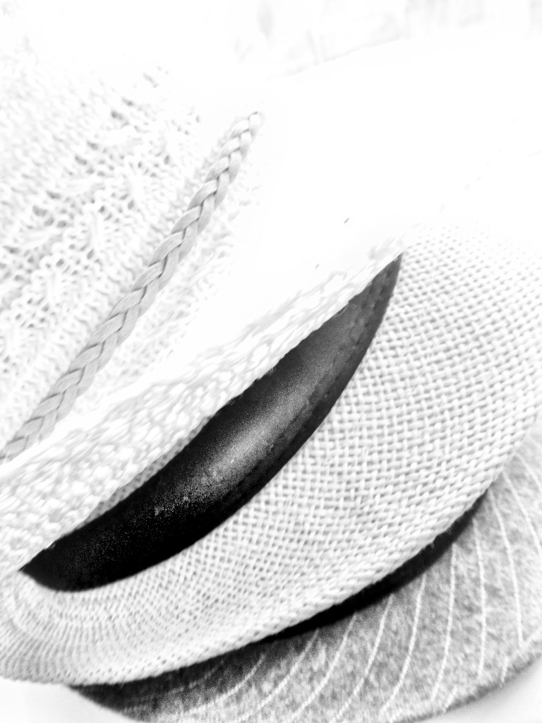 The difference between a fedora and trilby? by shannejw