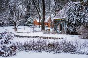 7th Feb 2019 - Winter at Inniswood Garden