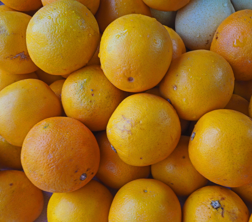 CNY-oranges by ianjb21