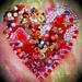 Busy Heart