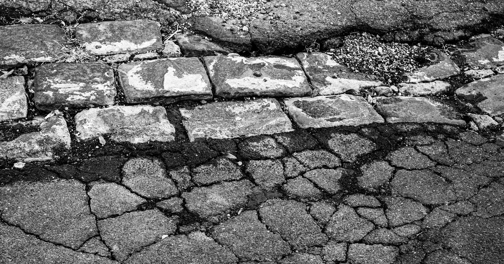 FORF9: Textures and Patterns#6: Crazy Paving by golftragic