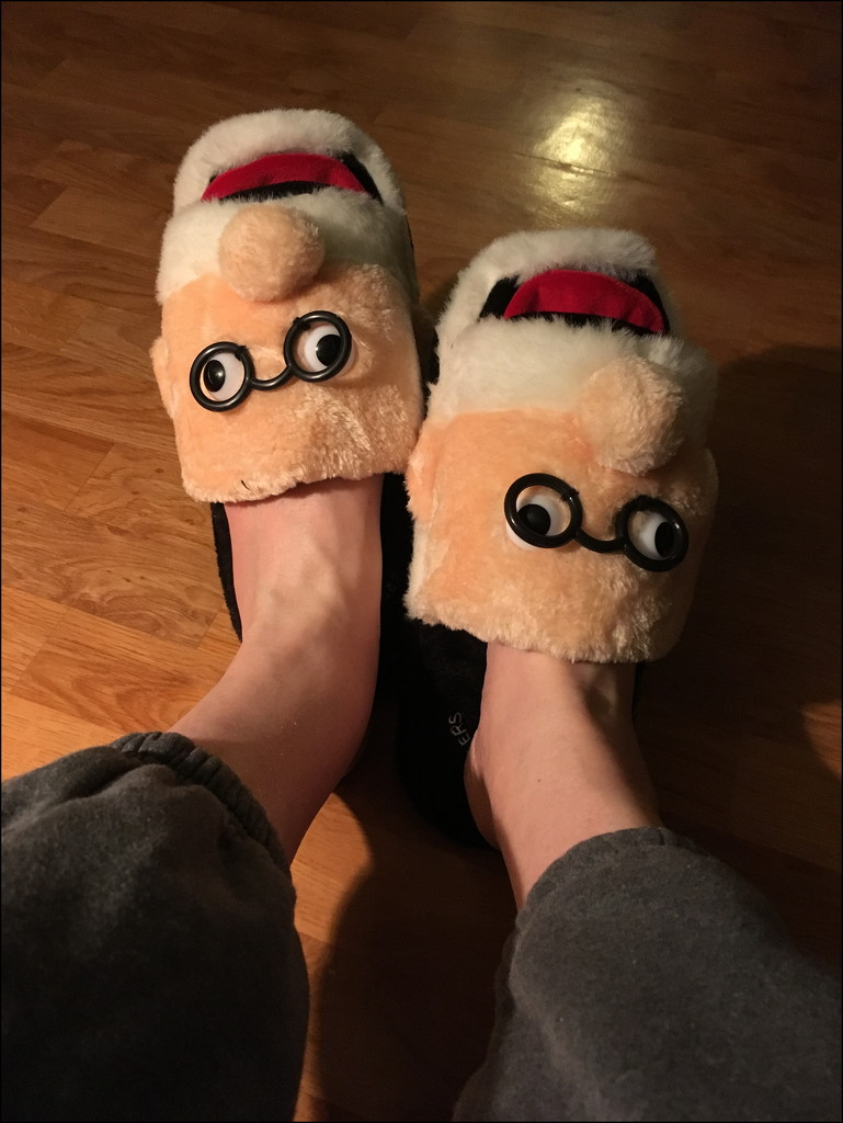 Freudian Slippers by bankmann