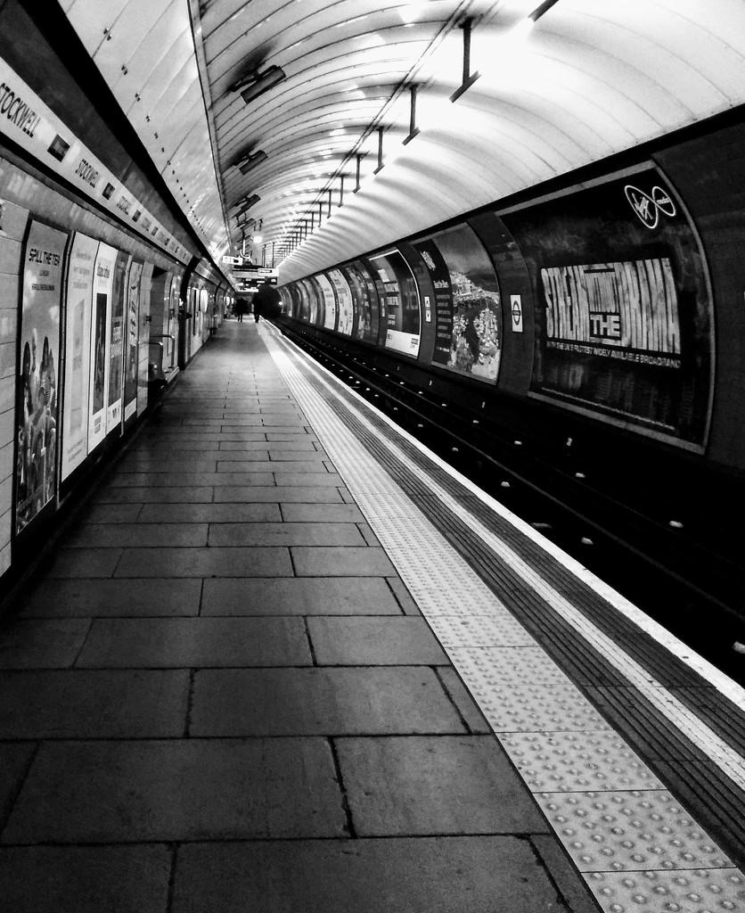 Platform by 4rky